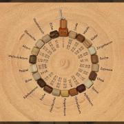 Screenshot der Website baumkreis.com, aus: Landingpage für Baumkreis-Armband