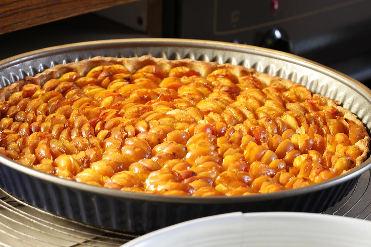Mirabellen - Kuchen, frisch aus dem Ofen