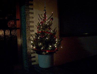 Eingangs-Weihnachtsbaum