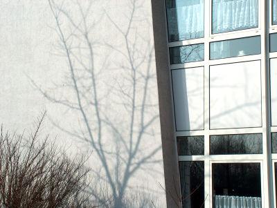 Fassaden-Baumschatten