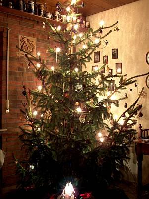 Unser Weihnachtsbaum 2005