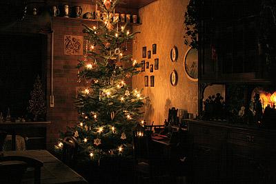 Unser Weihnachtsbaum 2008