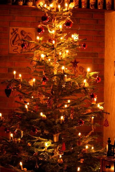 Unser Weihnachtsbaum 2009