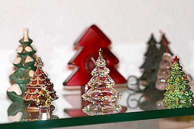 Wald der Weihnachtsbäume