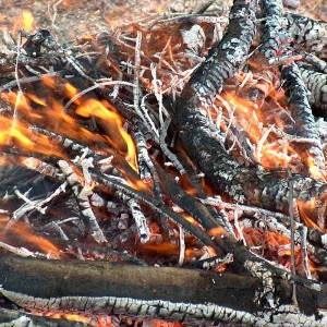 Holz-Feuer