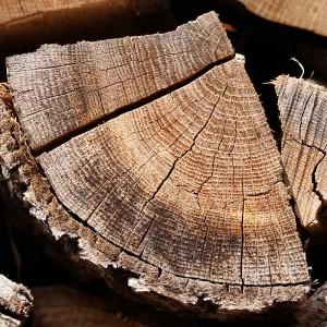 Holz-Struktur