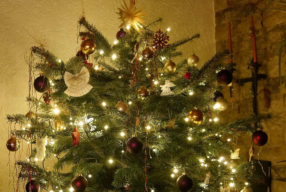 Judiths Weihnachtsbaum