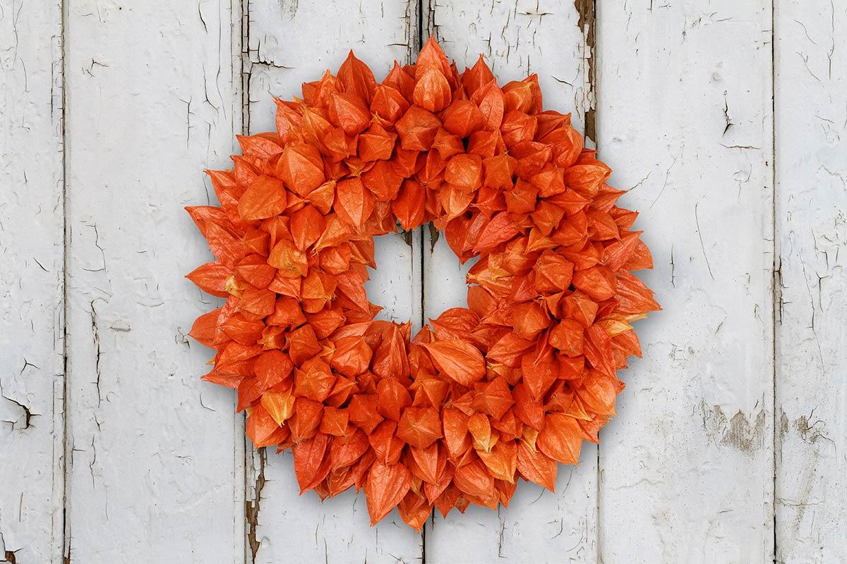Herbstlicher Kranz mit Physalis-Lampions