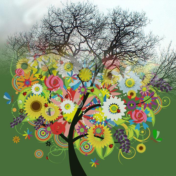 Wunschbäume